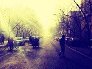 desolate-street