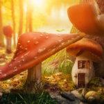 mushroom-house