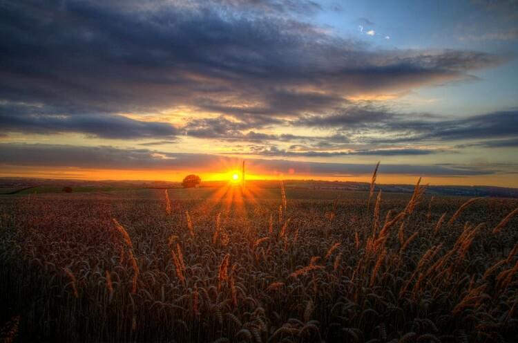 sunrise-morning
